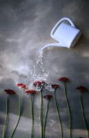 watering the flowers II by NatsPearlCreation