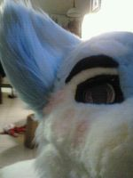 Sugar Partial photo WIP 5 by TalesOfVespie