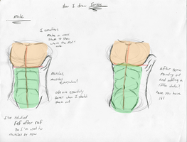 How I draw: male Torsos by DinoMatt24