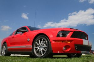 Red Mustang Shelby GT500KR by rimete