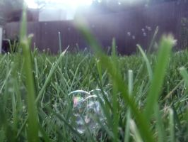 Entrenched Bubble by SumYungGa1