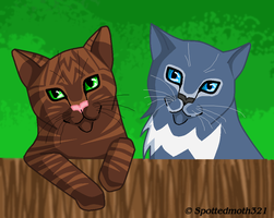 Brindlepaw and Rainpaw by Spottedmoth321