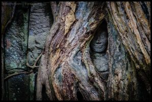Ancient wisdom by Dominion-Photography