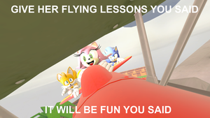 Flying Lessons (With Caption) by SonicTheHedgeTrimmer