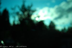 Blurred Sun Through Trees 02 by M-L-Griffith