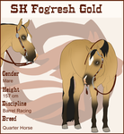 REF - Fogresh Gold Skyline by SkylineBB