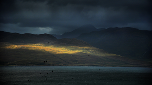 Scotland II by Nelleke