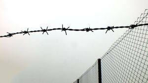 Barbed wire - 2 by moslem-d