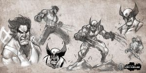 Wolverine sketches and studies by JoeyVazquez