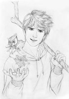 Do You belive in Me... Jack Frost by crystalrain2702