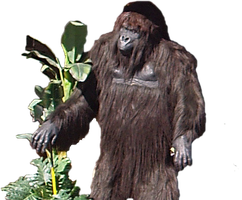 Gorilla My Dreams Cut Out PNG by nitch-stock
