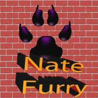 Nate furry productions logo by Natefurry
