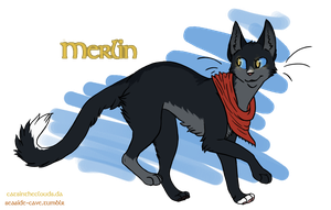 Cats of Camelot: Merlin by CatsInTheClouds