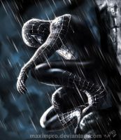 Spiderman by MaximPRO