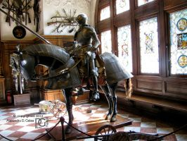 Knight, Peles Castle by AlexandruGatea