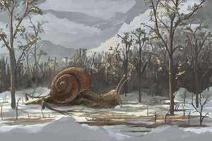 Snail by ThroughSpaceAndTime