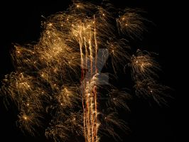 Fireworks #3 by FloraDelaney