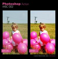 Photoshop Action - Misc 002 by primaluce