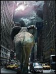 Elephant in New York by Flobelebelebobele