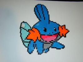 Mudkip by pikminimon