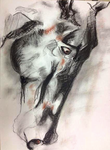 Charcoal horse by Nitekissed