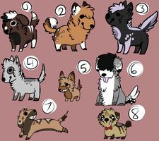 .: Canine Adopts //closed//:. by napprs