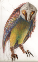 OH MY GOD ITS A RAINBOW OWL by BASbird