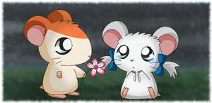 Hamtaro - H+B - Flower by Endless-Rainfall