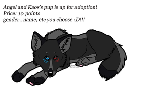 Angel And Kaos Pup # 1 is up for adoption (closed) by AngelWolfsRevenge