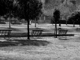 Vintage Park by Banderole