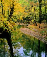 Fall creek, img.441 by harrietsfriend