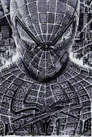 Amazing Spiderman by Exenity