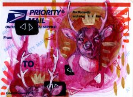 Two Pink Deer On a Mail Label by manfishinc