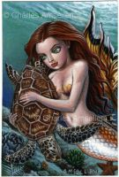 Mermaid And Sea Turtle by charlesartist