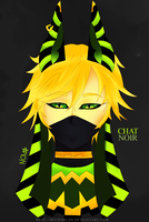 Egyptian Chat noir - Miraculous Lady bug by SkyWorlds