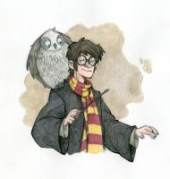 Harry Potter by MarcoL87