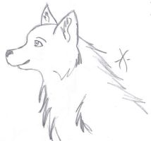 Wolf Pup? by Ishbal