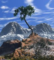Lonely Pine by slepalex