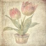 FREE TEXTURE VINTAGE FLOWERS #2 by My-AngelWings