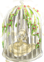 Within This Small Birdcage...? by Doumu