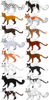 Erin Hunter's warriors designs part 2 by Sonnenpelz
