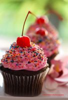 German Chocolate Cupcake w/Strawberry Frosting by theresahelmer