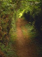 The Cotswold Way by younghappy
