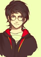 Harry Potter by Vylin