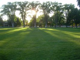 Park Sunset 3 by abuseofstock