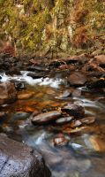 Beaver River Currents Autumn by houstonryan