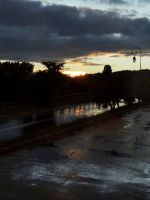 Just after the rain - just before the night by eco6org