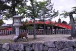 Deer and Soribashi in Miyajima by AndySerrano