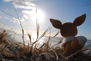 Eevee at the Beach by OhThereYouArePerry