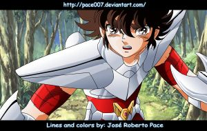 Seiya warrior of hope by pace007